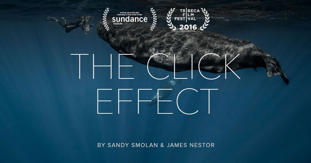 The Click Effect